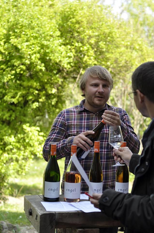 Beratung-Probe und Weinverkauf